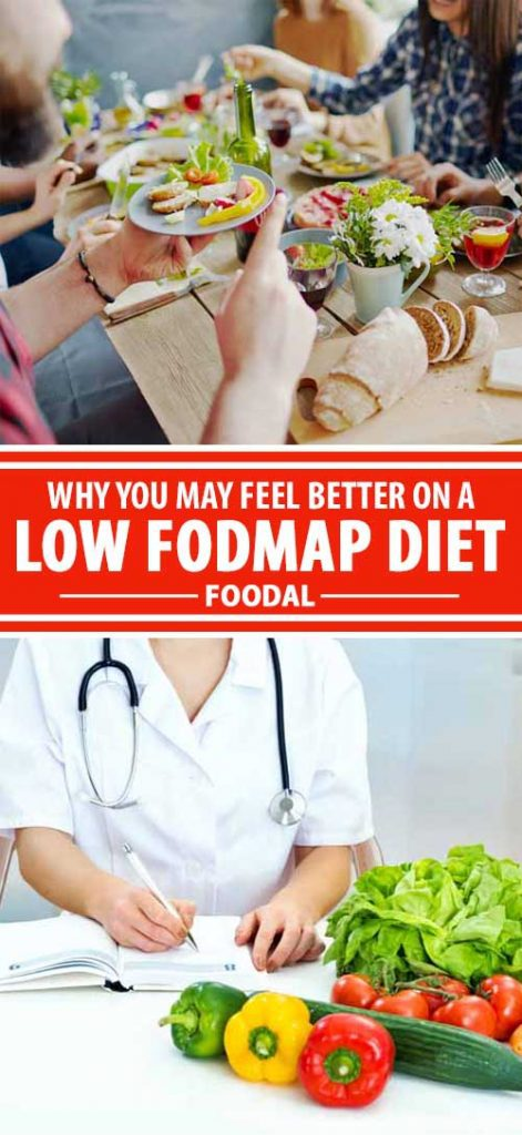 FODMAP is an acronym to describe a group of short-chain carbohydrates that may contribute to irritable bowel syndrome. Knowing which foods contain significant amounts of these hard-to-digest carbs may help pinpoint sources of abdominal distress. Read more on Foodal.