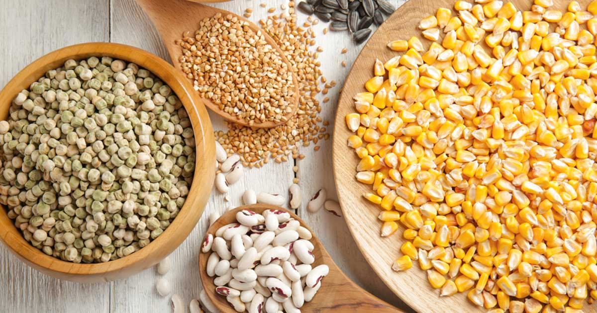 what types of whole grain can you grind at home foodal