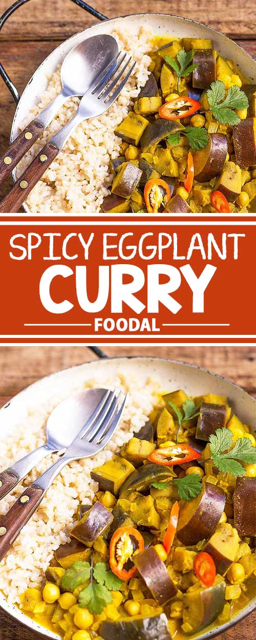 Add some feisty flavor to your next vegetarian meal! Our spicy curry is made with tender chunks of eggplant and chickpeas slowly simmered in a creamy coconut milk base that's infused with fresh chili and spices. Serve it with brown rice to enjoy a dinner that's both tasty and hearty. Get the recipe now on Foodal.