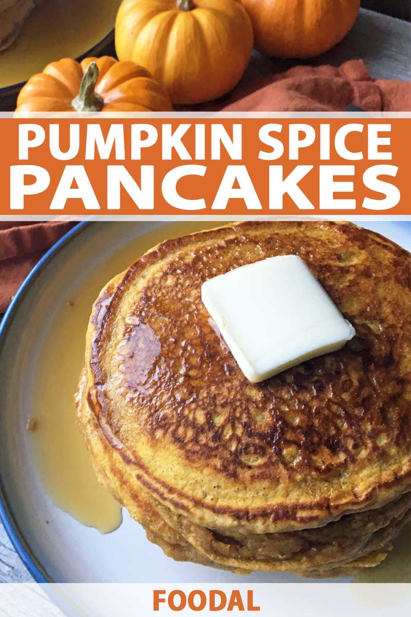 Top down view of stack of pumpkin spice pancakes on a plate.