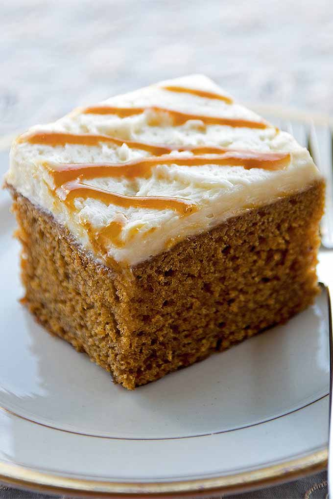 Love pumpkin beer? It's one of our favorite ingredients in this cake! Click through for more delicious pumpkin recipes that aren't pie: https://foodal.com/knowledge/paleo/best-pumpkin-recipes/