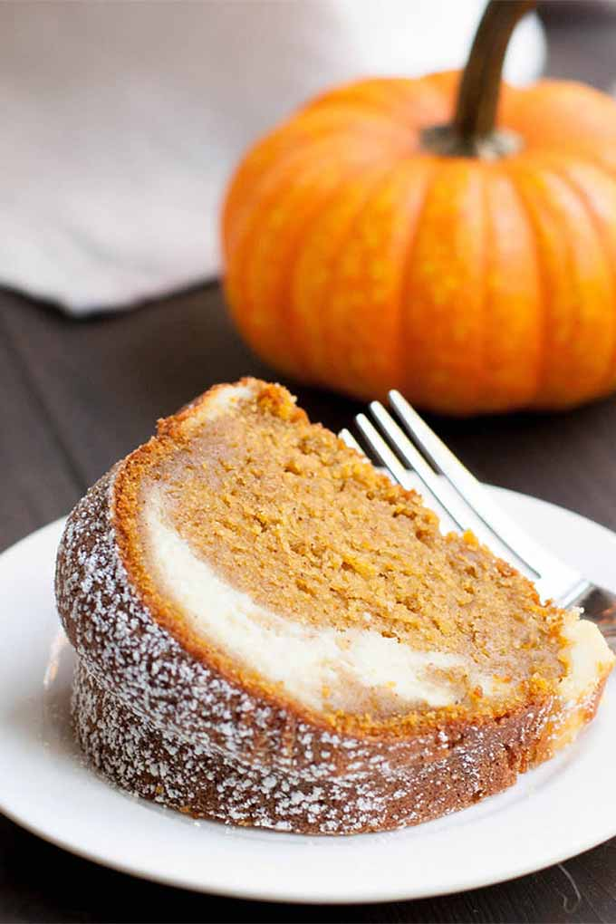 This pumpkin ricotta bundt cake is just one of over 40 recipes that you're find in our round up on Foodal: https://foodal.com/knowledge/paleo/best-pumpkin-recipes/