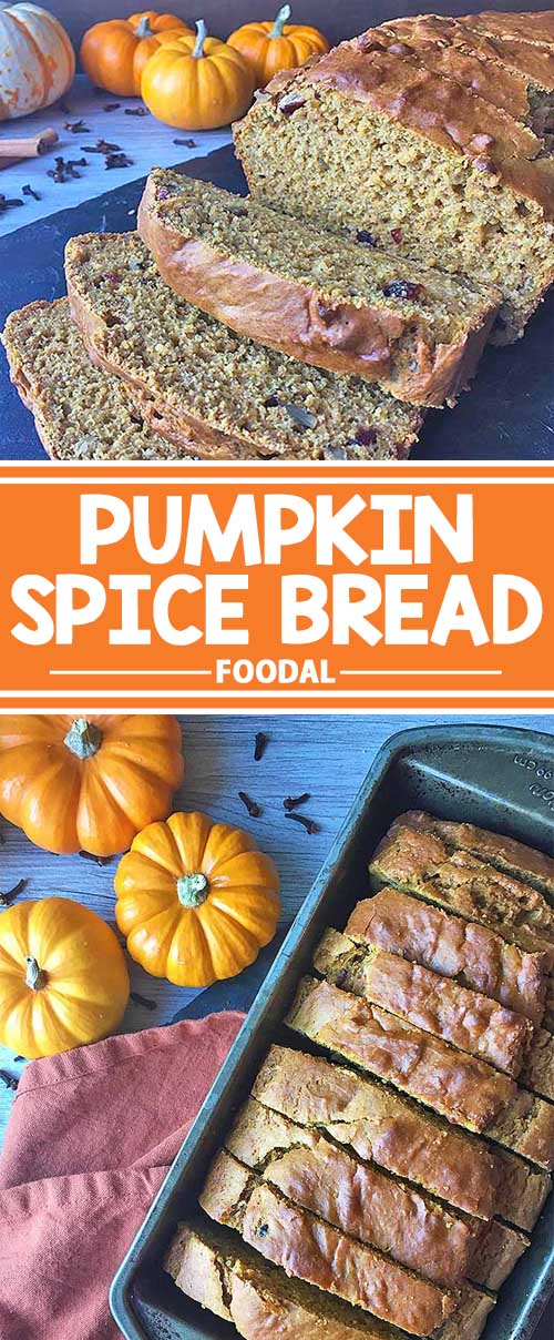 Our simple recipe for homemade pumpkin spice nut bread is made with a beautiful blend of spices, pumpkin puree, and other ingredients you have in your kitchen. We make it super easy for you to mix, bake, and enjoy! Celebrate the fall season now with a thick slice of this sweet and spicy goodie, and get the recipe on Foodal!