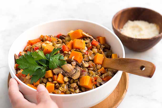 The Best Recipe for Lentil and Vegetable Stew   Foodal.com
