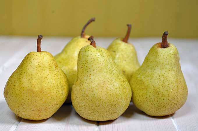 Bartlett Pears| Foodal.com