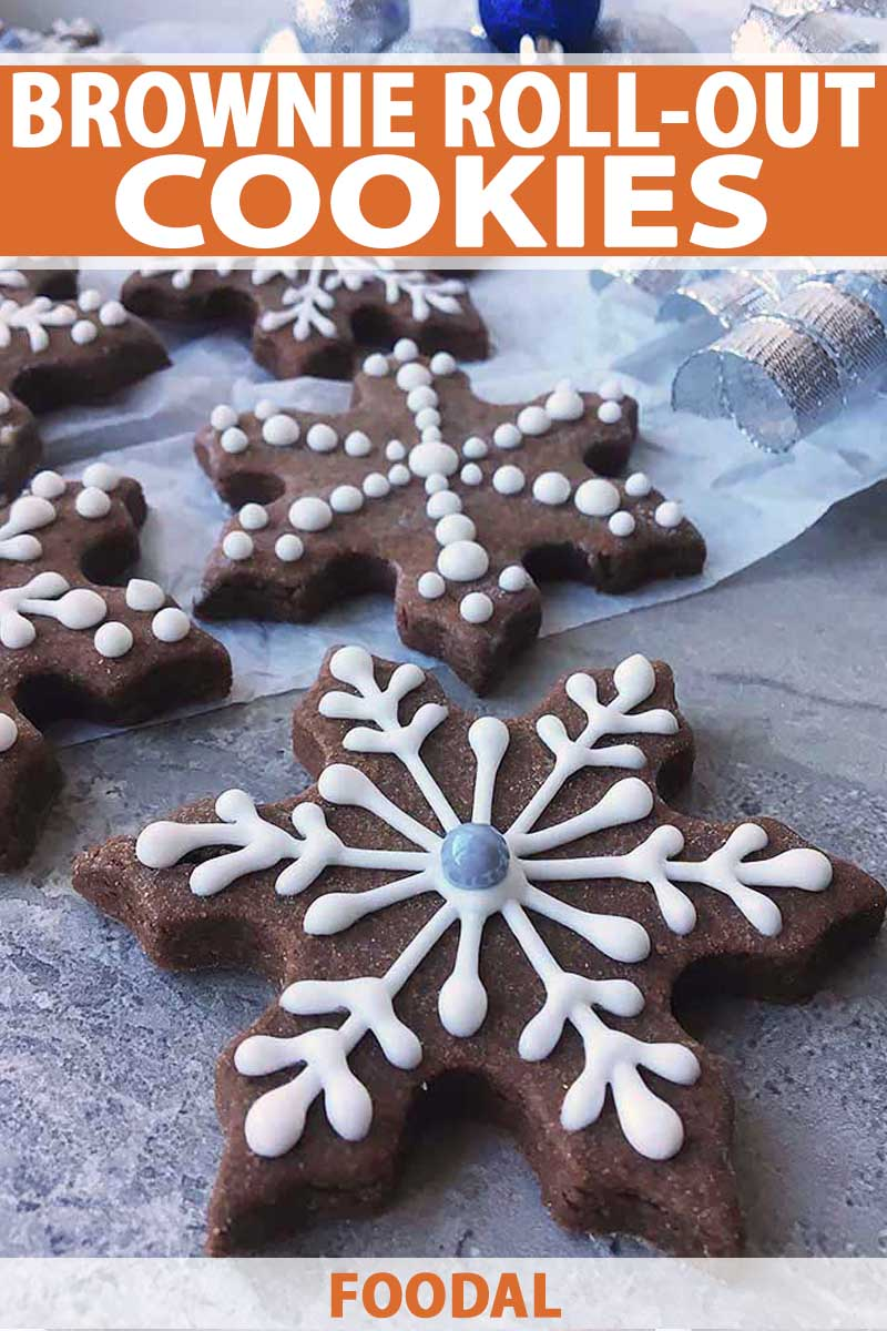 Bake Fudgy Brownie Cut Out Cookies For The Holidays Foodal