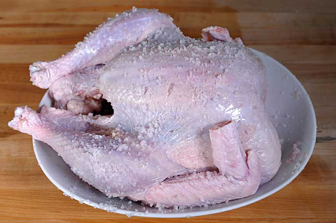 An oblique view of a turkey in a white ceramic bowl coated with coarse sea salt to be dry brined   Foodal