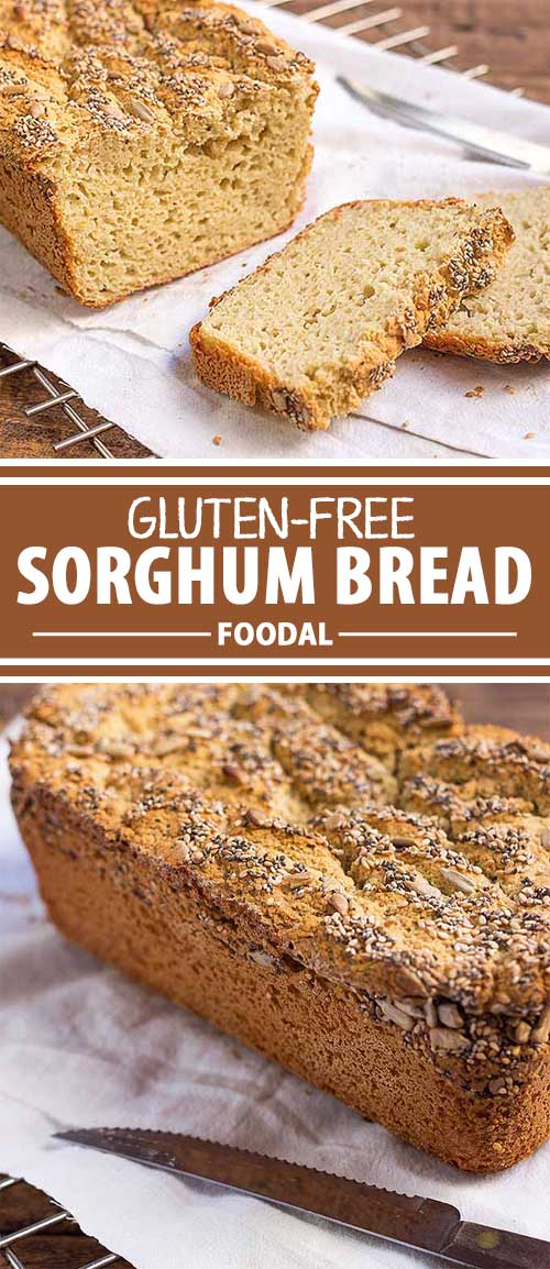 Gluten-Free Sorghum Bread is a Fluffy Base for EVERYTHING