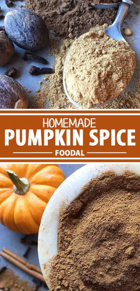 A collage of photos feature different views of a homemade pumpkin spice mix.