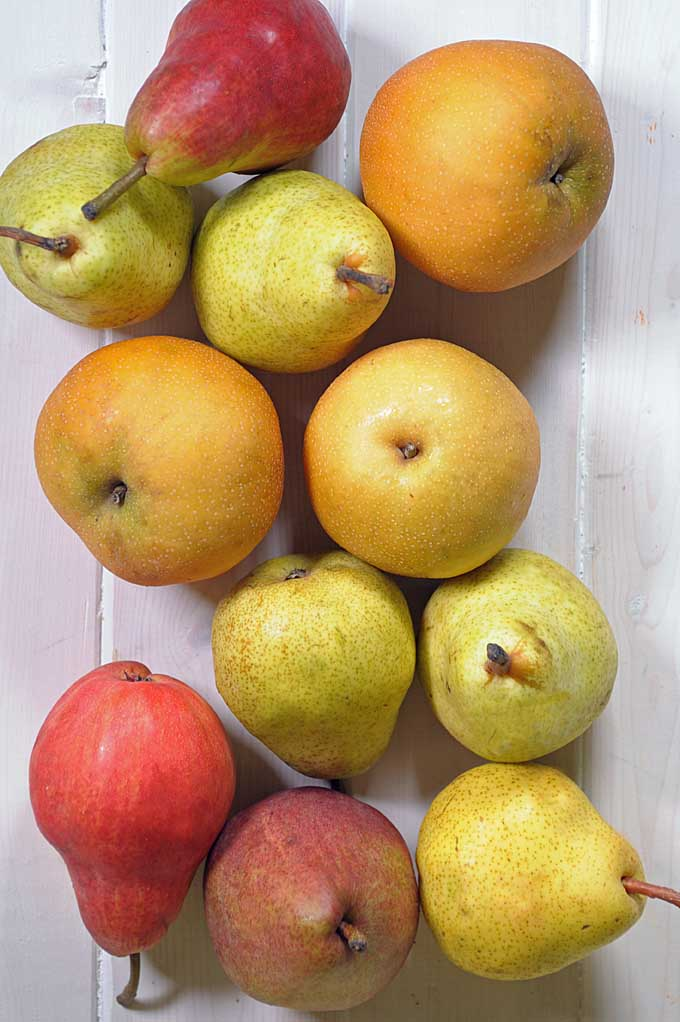Learn how to choose, ripen, and store pears with our simple how-to guide: https://foodal.com/knowledge/how-to/store-pears/
