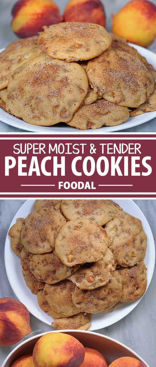 Do you love pastries but love the storage and portability of cookies? If so, this peach version will definitely do the trick. The fruit makes this one something special – part pastry and part cookie, this dessert is to die for. Get the recipe now on Foodal! #peachdesserts #christsmascookies #holidaycookies #fruitdesserts