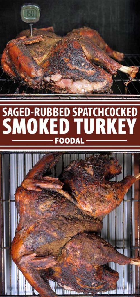 Are you tired of dried out, chewy turkey? If so, you really should take a look at this recipe that incorporates various techniques such as butterflying, dry brining, and dry rubbing to lock in flavors and juices. Get the the instructions now!