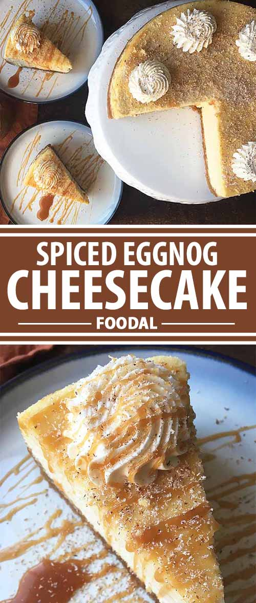 Spiced Eggnog Cheesecake: The Perfect Boozy Holiday Dessert!