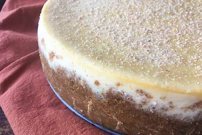 The Best Boozy Cheesecake Dessert | Foodal.com