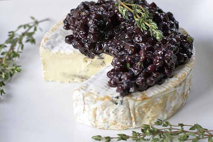 Brie with Wild Blueberry Chutney | Foodal.com