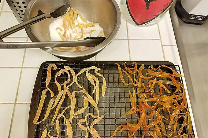 Dip Candied Citrus Peels in Sugar | Foodal.com