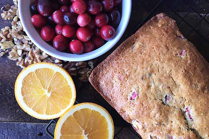 Fresh Orange and Cranberry Nut Bread | Foodal.com