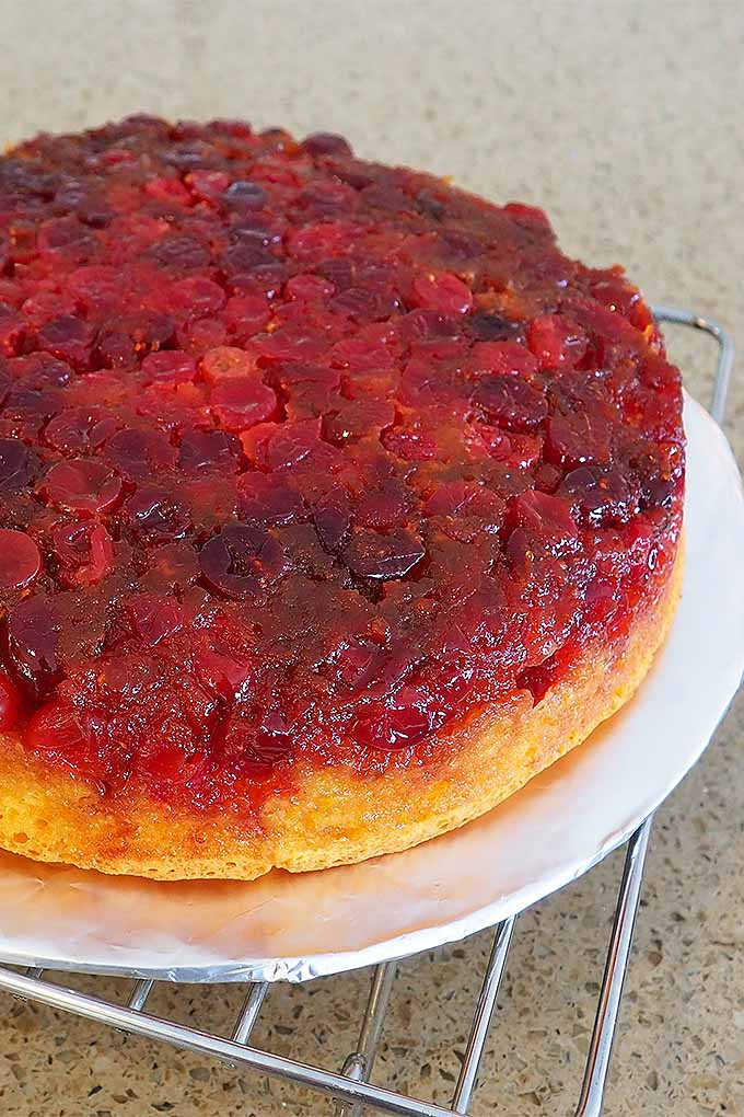 You've got to try our recipe for Cranberry Upside Down Cake- the perfect holiday dessert! Read more now or Pin It for later: https://foodal.com/recipes/cakes/cranberry-upside-down/ #cranberry #holiday #dessert #cake