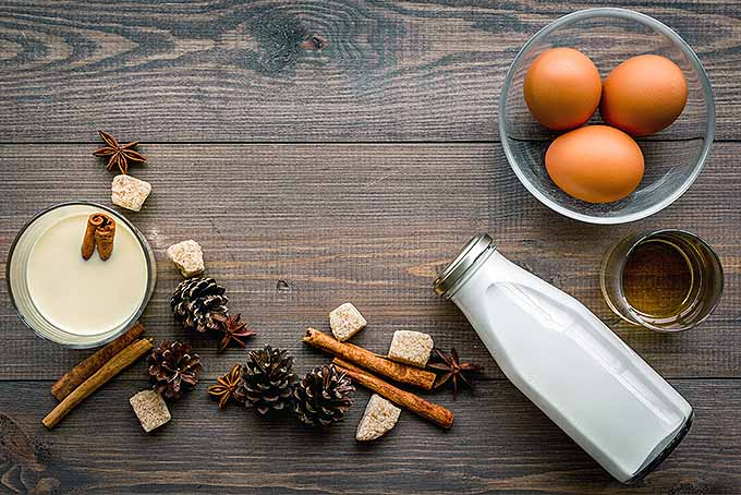 All About Holiday Eggnog | Foodal.com