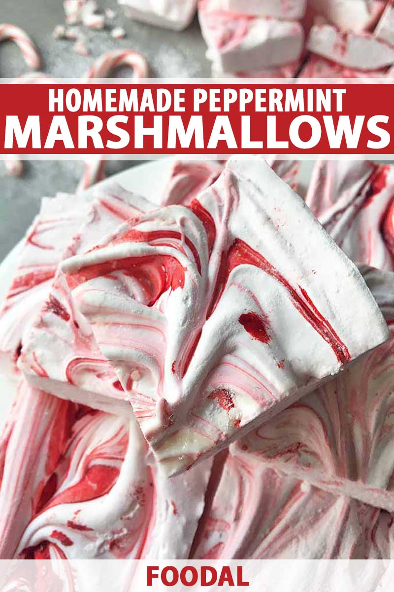 Top down close up view of a batch of homemade peppermint marshmallows.