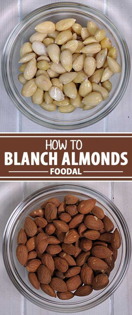 Do you have a recipe that calls for blanched almonds but you just have regular nuts in your pantry? You can blanch and deskin them yourself in a couple of minutes. Find out what you need to know now!