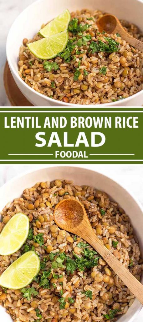 Bored by your usual side dishes? Swap out your typical options with this fun lentil and brown rice salad. You'll love the meaty lentils and perfectly chewy whole grain brown rice, as well as the bold flavors from fresh cilantro, lime juice, and a savory tamarind sauce. Give your side dish a delicious makeover, and make our recipe on Foodal!