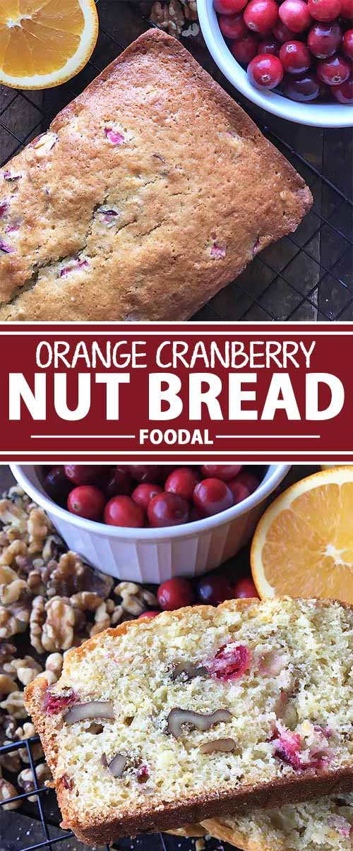 A delicious combination of sweet and tart, our homemade orange cranberry nut bread is the perfect treat to give as gifts during the holiday season. Flavored with orange juice and mixed with fresh cranberries and walnuts, you might as well attach the recipe for this, too – everyone will be asking for it! Bake it now on Foodal.