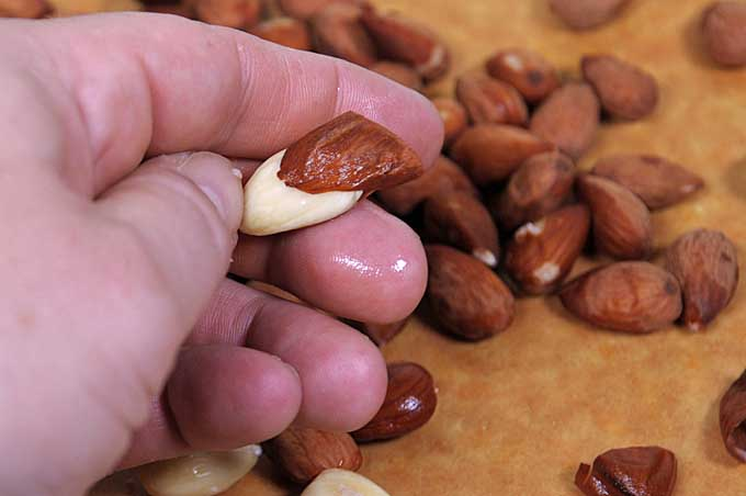 Peeling blanched almonds with a thumb and forefinger | Foodal