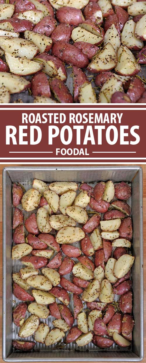 Roasted Rosemary Red Potatoes