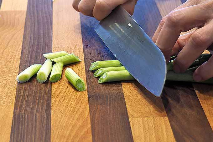 Slice Green Onions at an Angle for Decoration | Foodal.com