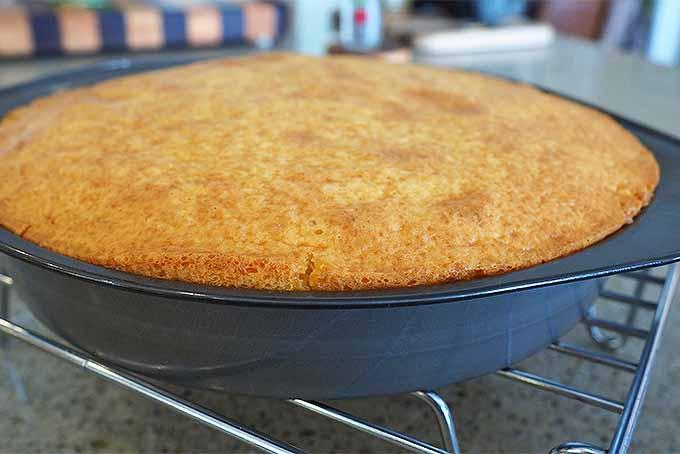 Freshly baked cake. | Foodal.com