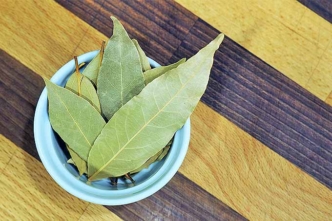 Dried bay leaves for cooking | Foodal.com