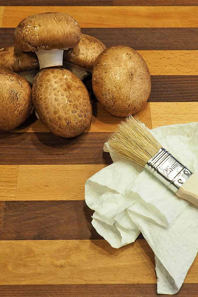 A dry paper towel and pastry brush are all you need to clean fresh mushrooms. Check out more of our fungi-loving tips now on Foodal: https://foodal.com/knowledge/how-to/store-mushrooms/