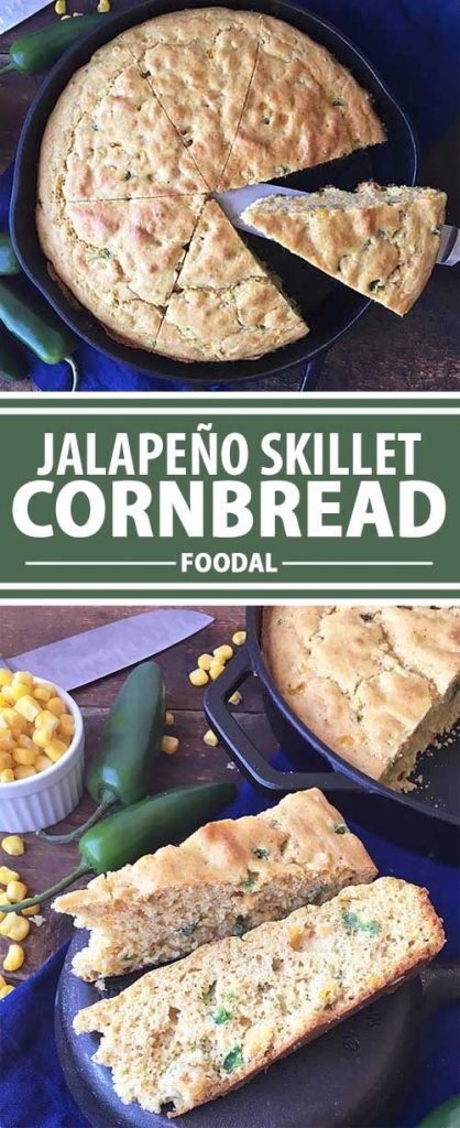 Our fluffy cornbread has corn kernels and jalapeños for a spicy kick. And for more fun? We bake ours in a cast iron skillet to get a crispy crust on the bottom. Quick and easy to make, this is a perfect baked goodie to serve with baked beans, chili, and barbecue. But it works just as well for a hearty snack with butter or honey. Enjoy this treat now on Foodal!