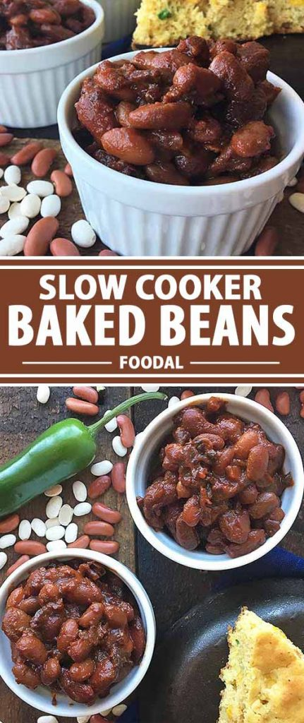 If you want to start using dried beans in your cooking, try our easy recipe for slow cooker baked beans! Go low and slow to get the most flavor, with a delicious sauce made from a sweet, sour, and savory blend of ingredients. Using your favorite beans, and flavorful ingredients like molasses, mustard, brown sugar, jalapeños, and vinegar, this is one tasty and hearty dish! Get the recipe now on Foodal.