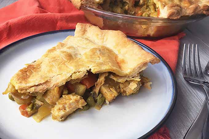 A Hearty Slice of Chicken Curry Pot Pie | Foodal.com