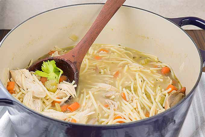 Cook up a pot of homemade chicken noodle soup. | Foodal.com