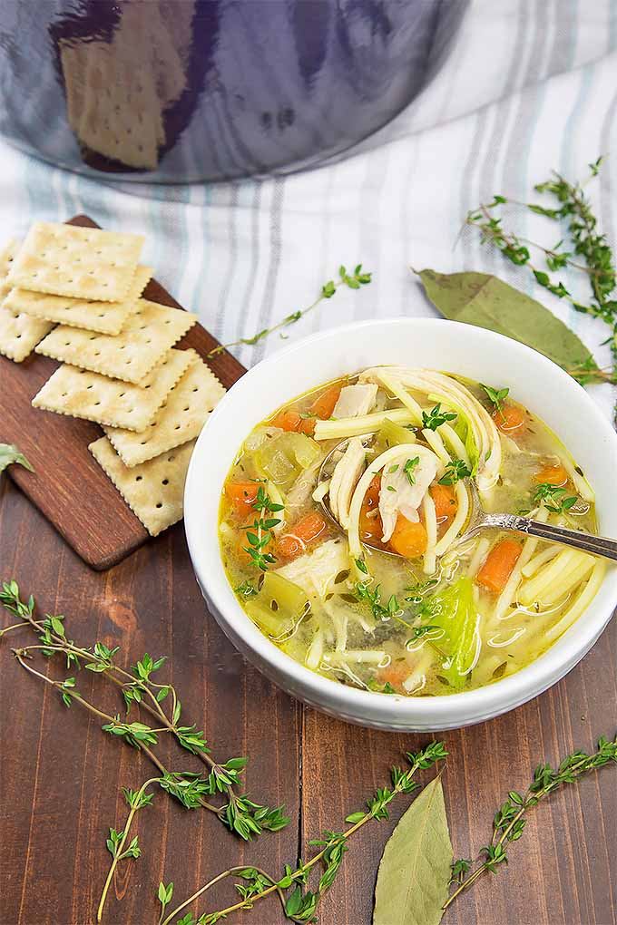 Homemade chicken noodle soup with root vegetables and fresh herbs | Foodal.com