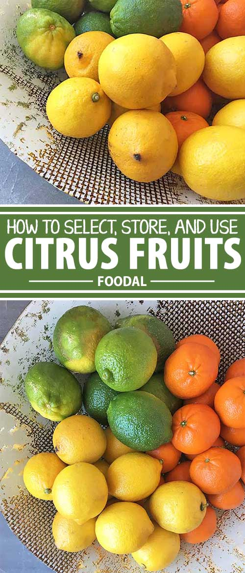 When life gives you lemons, make lemonade. But before you make any refreshing recipes, from drinks to dessert, know how to store lemons, as well as all citrus fruit. To keep them at their best, and enjoy all the tart and juicy benefits, learn how to select and store them properly. Get all the info here on Foodal.