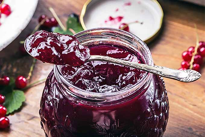 Closeup of a glass jar filled with purple jam, with a spoonful of the jam resting on top, with the lid of the jar and scattered red currants and green leaves on a brown countertop in the background.
