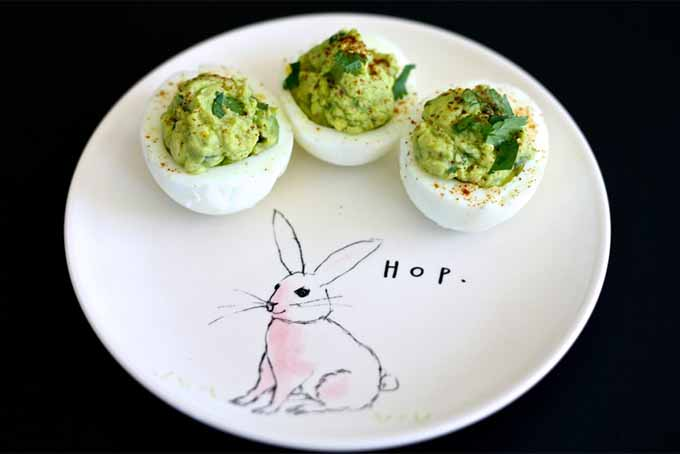 "Three hard boiled egg white halves filled with an avocado and egg mixture, and topped with chopped cilantro leaves, on a round, white plate with an illustration of a pink rabbit on it and the word ""hop,"" on a black background."