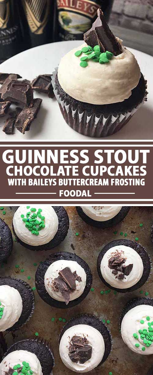 Guinness Stout Chocolate Cupcakes with Baileys Buttercream Frosting