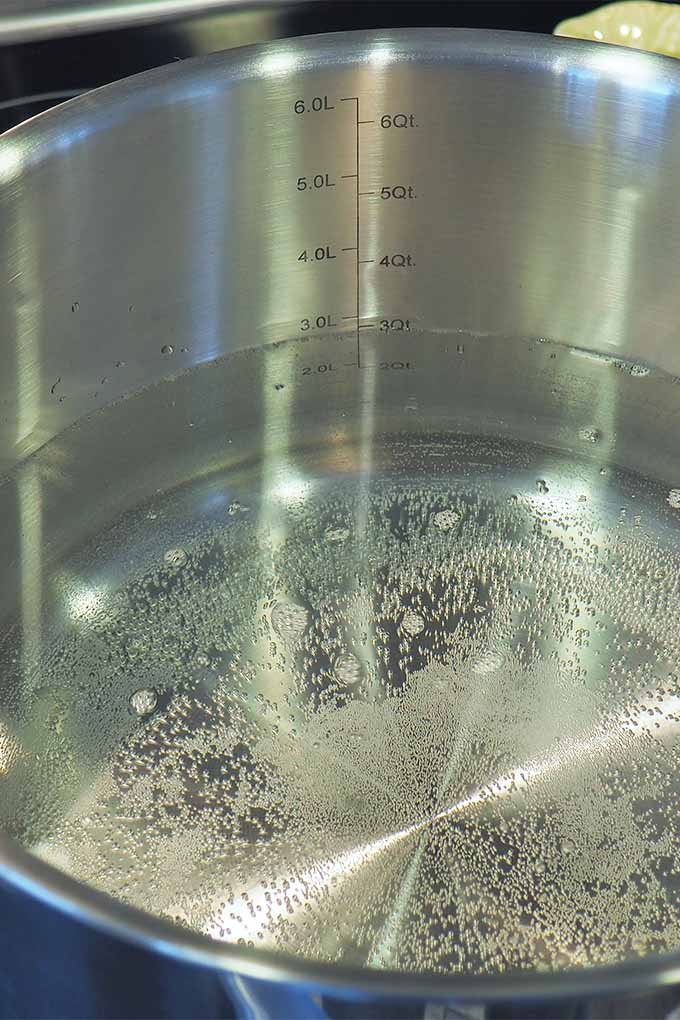 Closeup of water beginning to boil in a stainless steel saucepan.