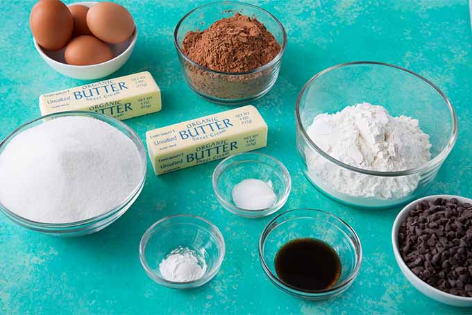 Top-down view of small glass bowls of brown eggs, cocoa powder, flour, sugar, vanilla extract, baking powder, salt, and two sticks of butter, on a robin's egg blue background.