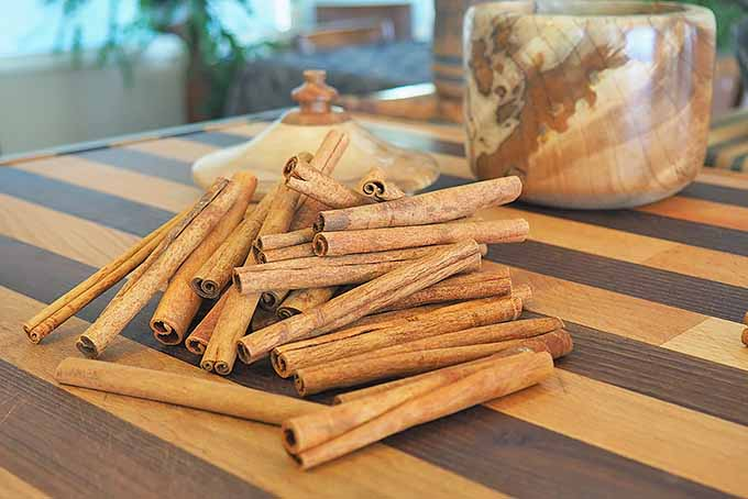 A pile of whole cinnamon sticks.