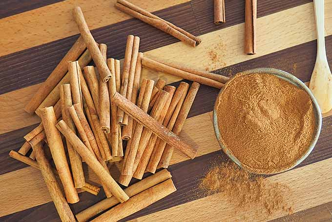Ground cinnamon and whole sticks.