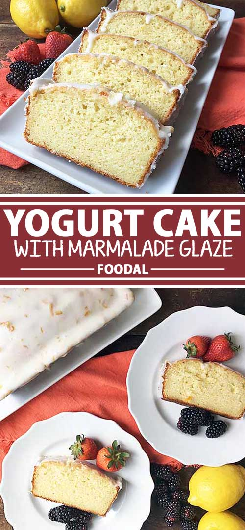 Yogurt Cake with Marmalade Glaze: A Perfectly Sweet and Light Ending to Your Meal