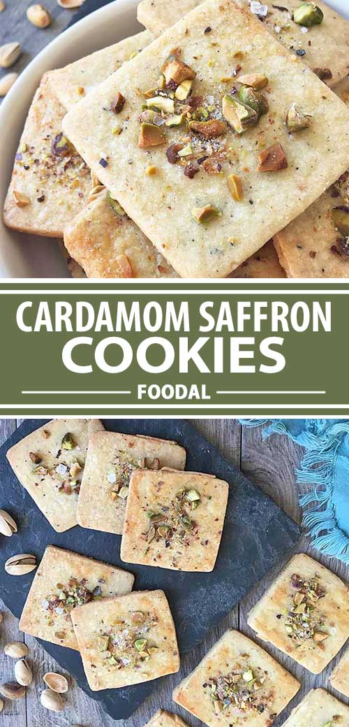 #cardamom #saffron #cookies #crackers Looking for a unique sweet treat with an interesting blend of flavors? Our thin and crunchy cardamom saffron biscuits serve up spiced sophistication. With a sprinkling of chopped pistachios and flaked sea salt on top, this dessert will delight and excite during your next special occasion. Get the recipe now on Foodal.