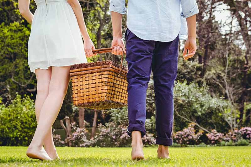 A woman in a white cotton dress and a man in a pale blue dress shirt and blue pants rolled up at the cuff are walking through the grass barefoot, carrying a wicker picnic basket together, with trees in the background.