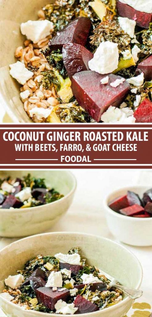 A collage of pins showing a coconut ginger roasted kale recipe.